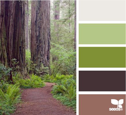 wooded hues - I like the dark brown with the greens
