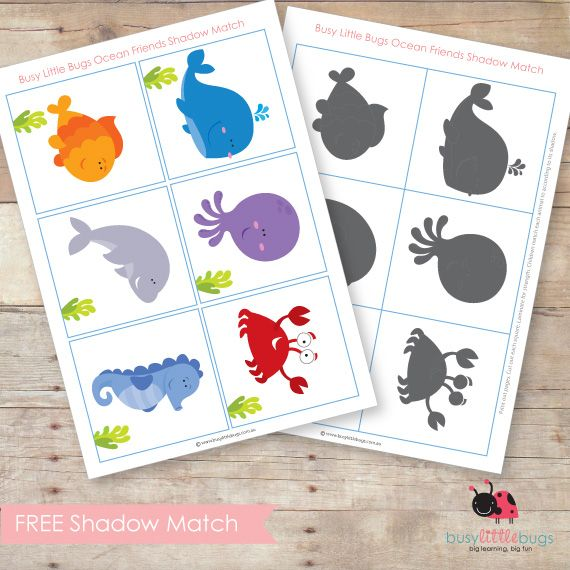 Free-Ocean-Animal-Shadow-Match