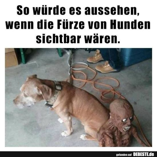 So würde es aussehen, wenn die Fürze von Hunden ...