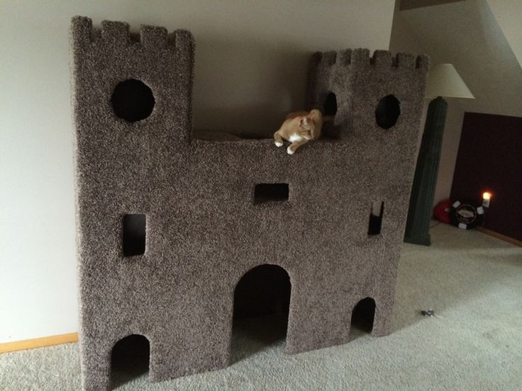 Use chipboard and carpet to make this super cool cat castle.