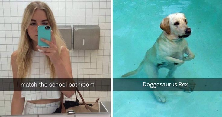 20+ Of The Funniest Snapchats Ever Sent | Bored Panda