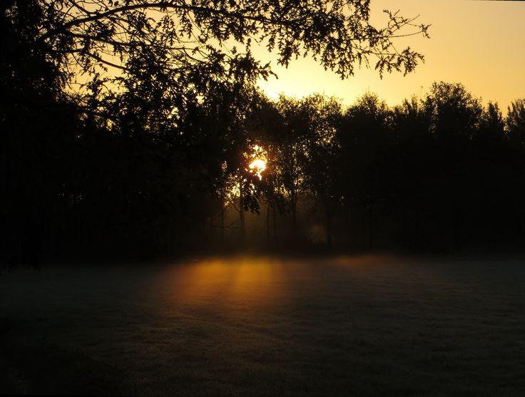 Aan duistere aarde ontwasemd pril licht ...