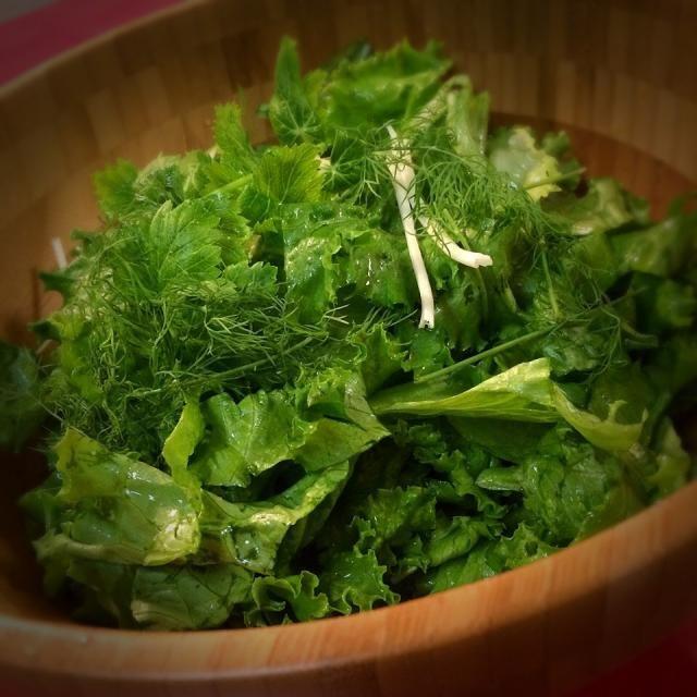 中川シェフに教わったサラダの作り方。 塩コショウ、オリーブオイルのみ! なのに「このドレッシングおいしいね!」って言われそうなほど、野菜の味が濃くなりました〜 ボールで合えると洗い物が増えるので、大きな木のボウルを買いました。 この量を食べてしまうほど、サラダが 激変しましたよ。 中川シェフ、ありがとうございました✨ - 91件のもぐもぐ - 中川シェフアドバイス 鎌倉野菜のグリーンサラダ by 1125shino