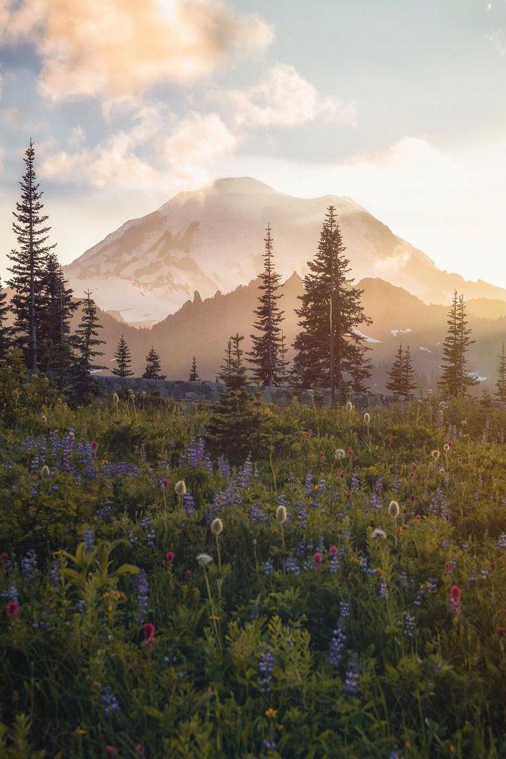 "banshy: "" Mt Rainier National Park // Scott Kranz """
