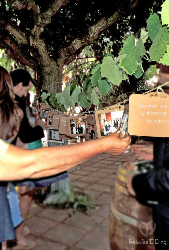 Exposición o parra de fotos en la boda #NPCollitadeNewYork. ¿estás en la parra? seguro que sí!! encuéntrate y responde a los novios!