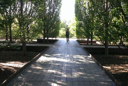architectural museum garden - walkway into planted area of Robert Irwin designed garden at DIA Foundation, Beacon, NY - atticmag