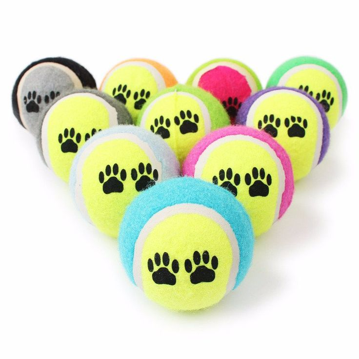 Variety Of Dog Toys - Friendly On The Teeth! – Big Star Trading Store