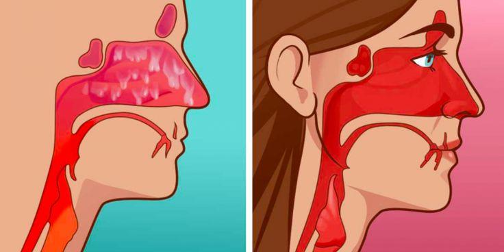 Det er mindre skarpt en næsespray, men burde kunne gøre nogenlunde det samme, mener trickets ejermand.