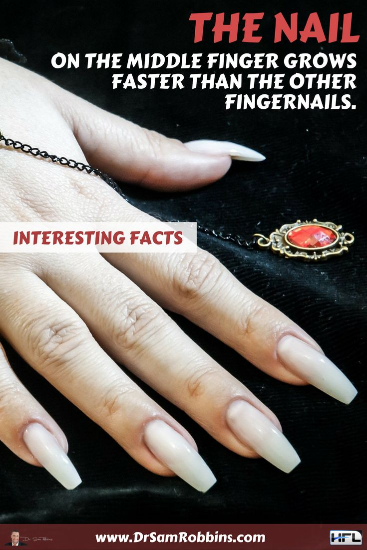 41 best Interesting Facts and Myths images on Pinterest ...