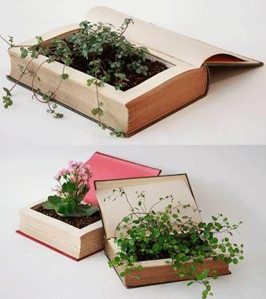 Um livro vaso