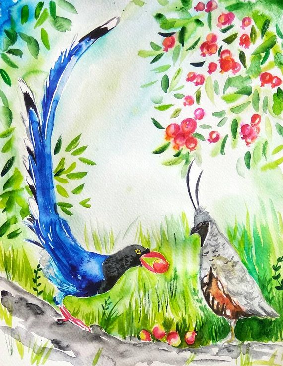 Blue Magpie And Crested Quail Original Watercolor Painting Birds
