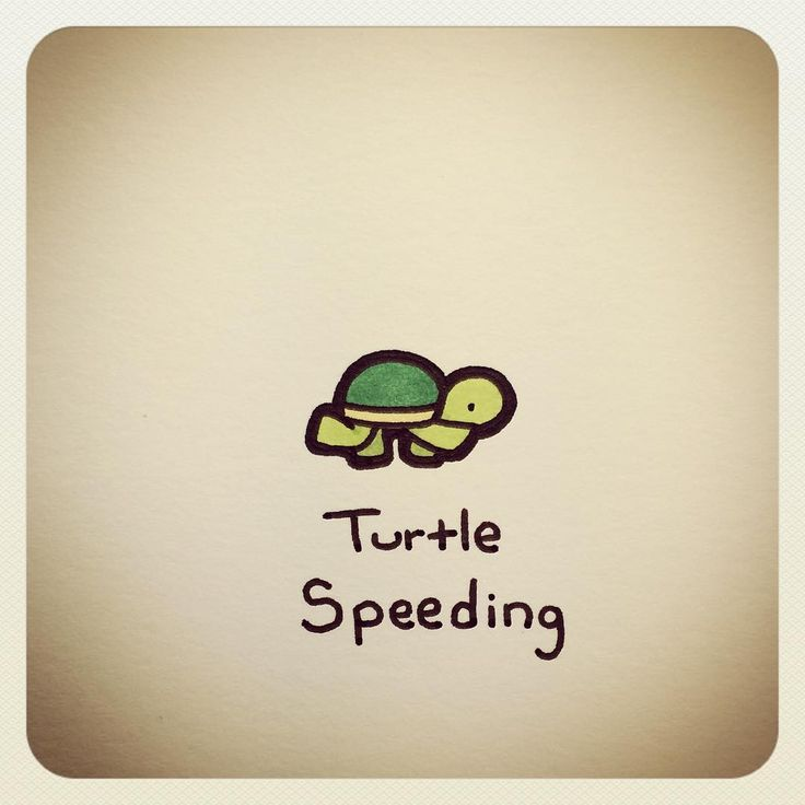 Turtle Speeding