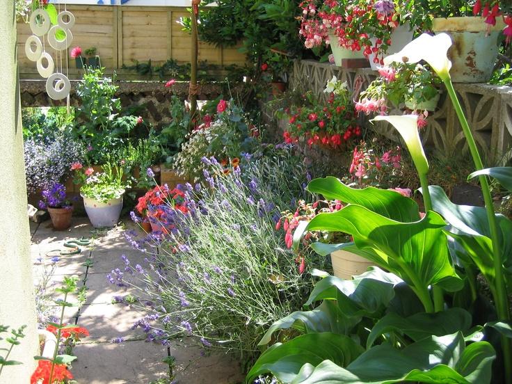 garden garden ideas pinterest