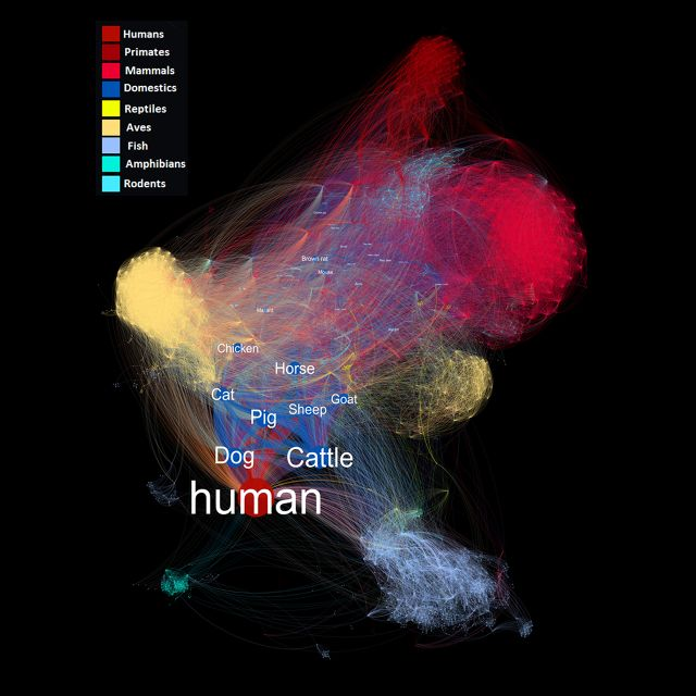 1000+ images about information is beautiful on Pinterest | Behance ...
