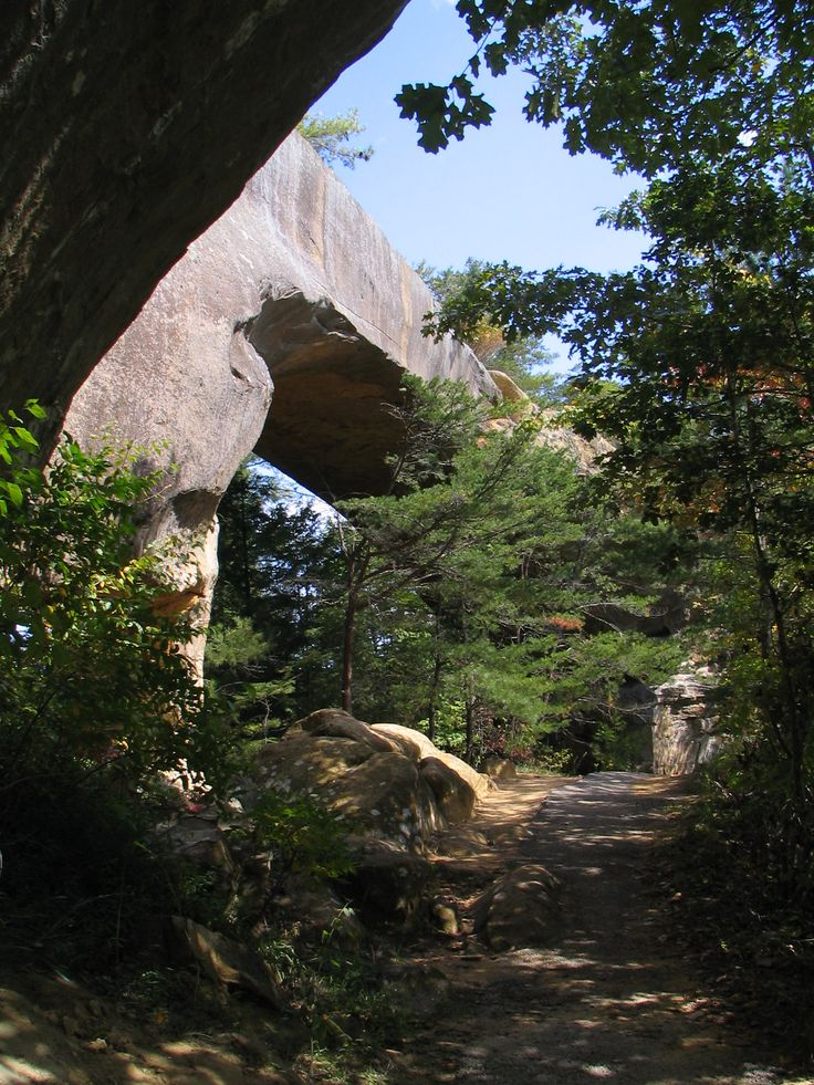 Red river gorge trails