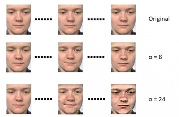 Machine Vision Algorithm Learns to Recognize Hidden Facial Expressions   MIT Technology Review