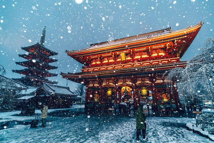 Magical Images of Tokyo Under the Snow | Netfloor USA