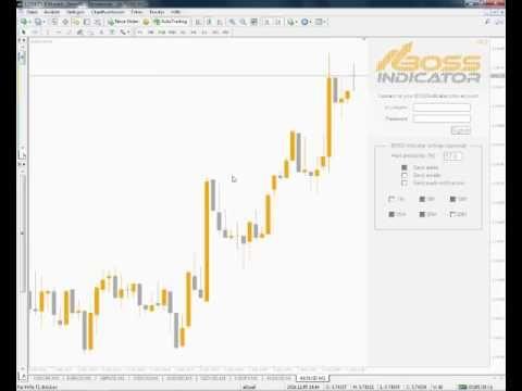 Cambio de moneda calforex