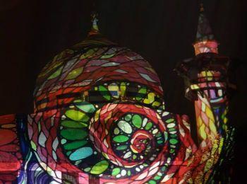 Night Projection fényfestés - Állatkertek éjszakája