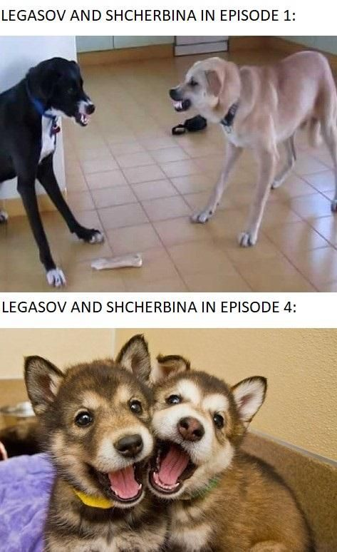 74 Funny and Imformative Chernobyl Memes To Help You Deal