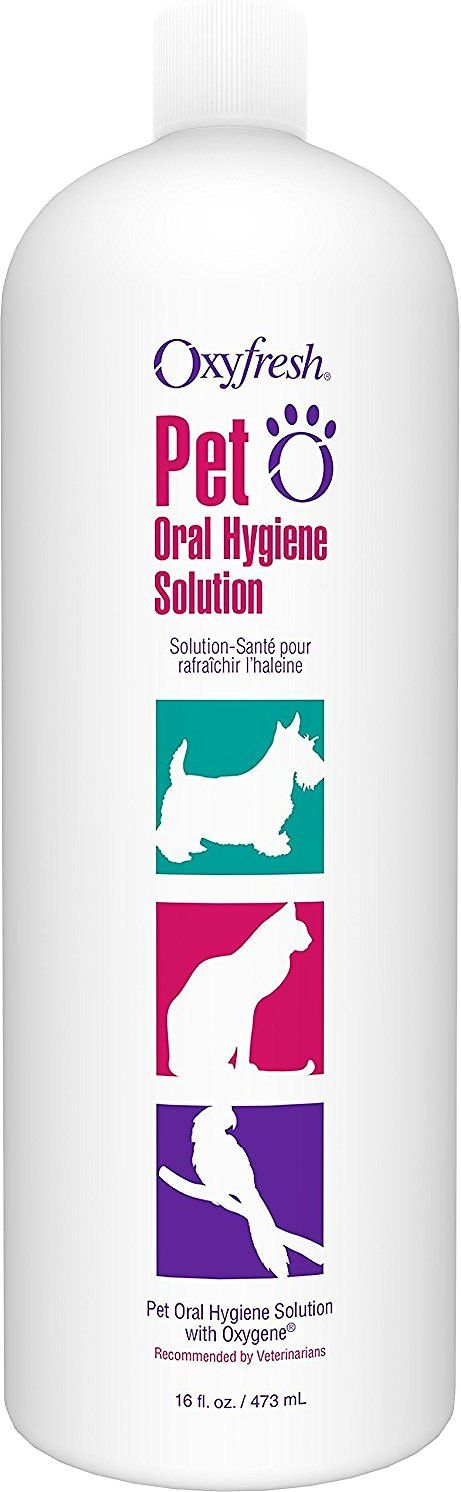 Keep your pal's breath smoochably fresh with the Oxyfresh Dog & Cat Oral Hygiene Solution. This veterinarian recommended formula harnesses the teeth-cleaning power of proprietary Oxygene and zinc acetate to fight tartar and gum disease, and freshen doggie and kitty breath. It's the perfect no-hassle solution to complement brushing that doesn't require wrangling your pal! Since it has no alcohol, taste or odor, you can simply add it to your pet's water while the formula does all the work. ...