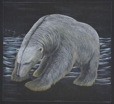 Tim Pitsiulak - Midnight Run 34.25 x 36.75 Coloured Pencil on paper (186-0512)