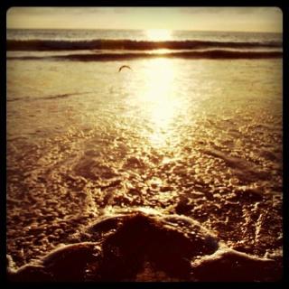 Sunset is Del Mar, Cali