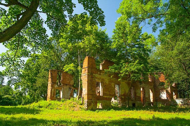Ruiny pałacu w Okuniewie