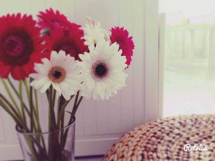♡ My new flowers