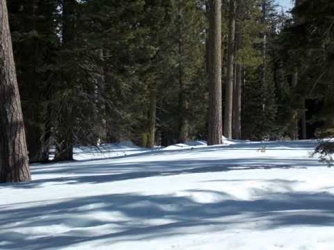 Night audio track from the wilderness near Mt. Lassen, CA, 2/18 - 2/22, 2013.
