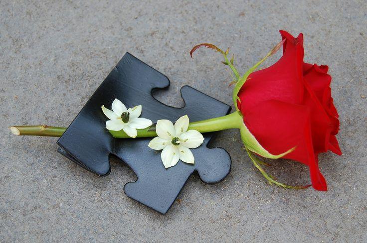 Bruidegom corsage met rode roos en zwart - wit details. www.meesterlijkgroen.nl