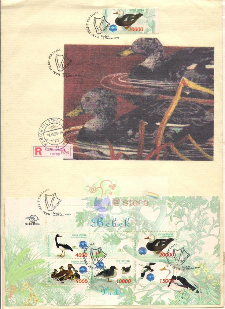 Bebek/ducks