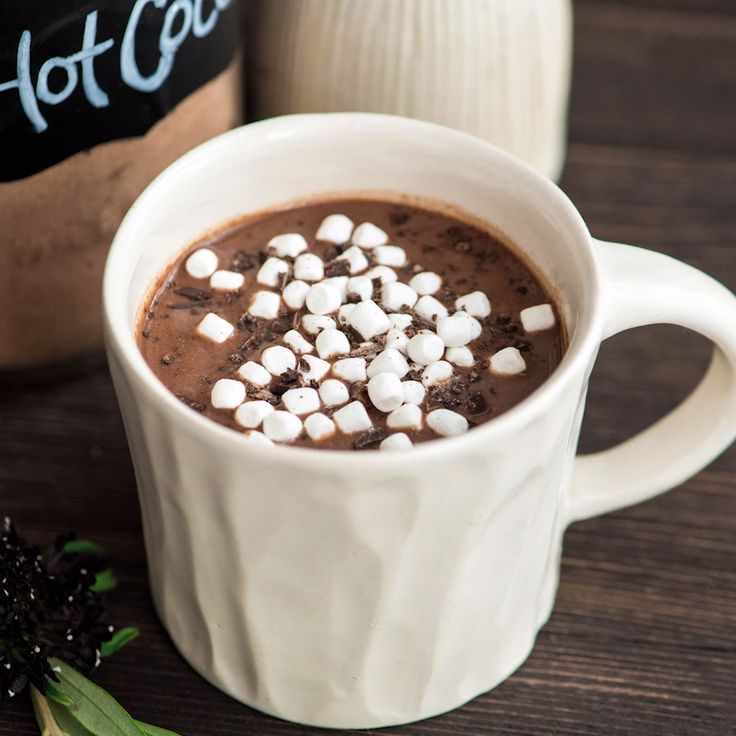 Dairy-Free Homemade Hot Cocoa Mix