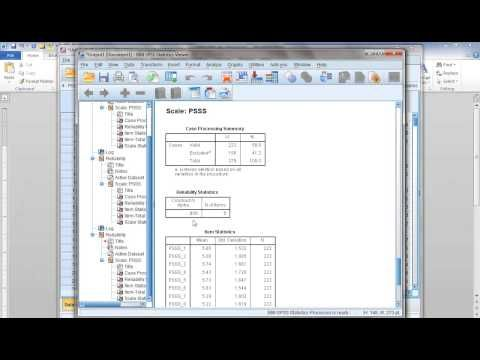 How to compute Cronbach's Alpha (reliability) in SPSS - YouTube