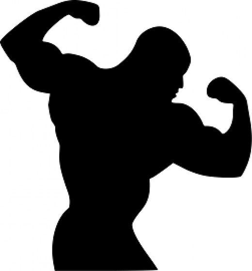 Bodybuilding muscle workout using different workout techniques like uni-set, multi-set, pyramid routines, super breathing sets and much more. Choose an effective workout that suits your lifestyle.