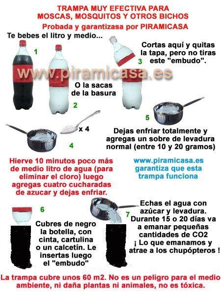Instrucciones trampa casera moscas y mosquitos