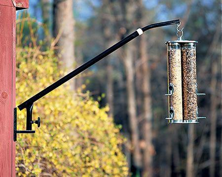 8 Best Bird Feeder Images On Pinterest Bird Feeders