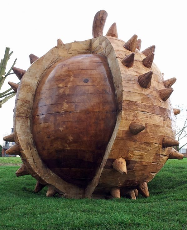 sculpture by artist David Gross titled: 'Conker (Big/Outsize Carved Wood Sweet Chestnut statue/sculpture/carving)'