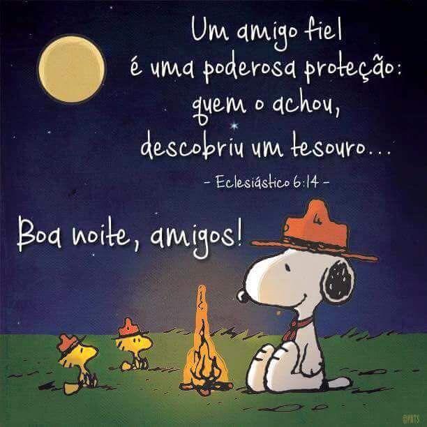 Boa noite amigos