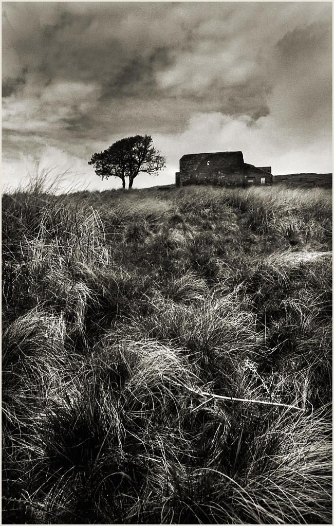 wuthering heights ghost scene essay Why should you care about ghosts in emily brontë's wuthering heights we  have the answers here, in a quick and easy way.