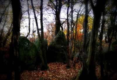 In val Sangone un bosco per le streghe Resti neolitici, menhir come a Stonehege e un'atmosfera magica e fiabesca: questo il sito che per caso ho scoperto a Pietra Borga, un monte sopra Sangano, dove sono stati ritrovati resti del neolitic #streghe #masche #piemonte #sota