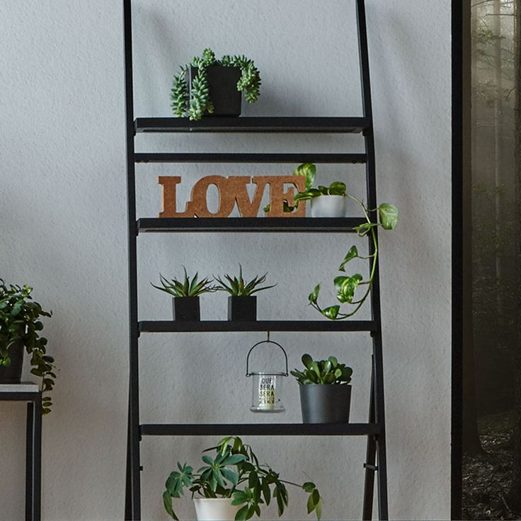 Metal Wall Ladder Shelf