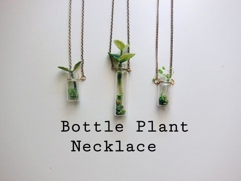 8 jewelry gifts starring plants : TreeHugger