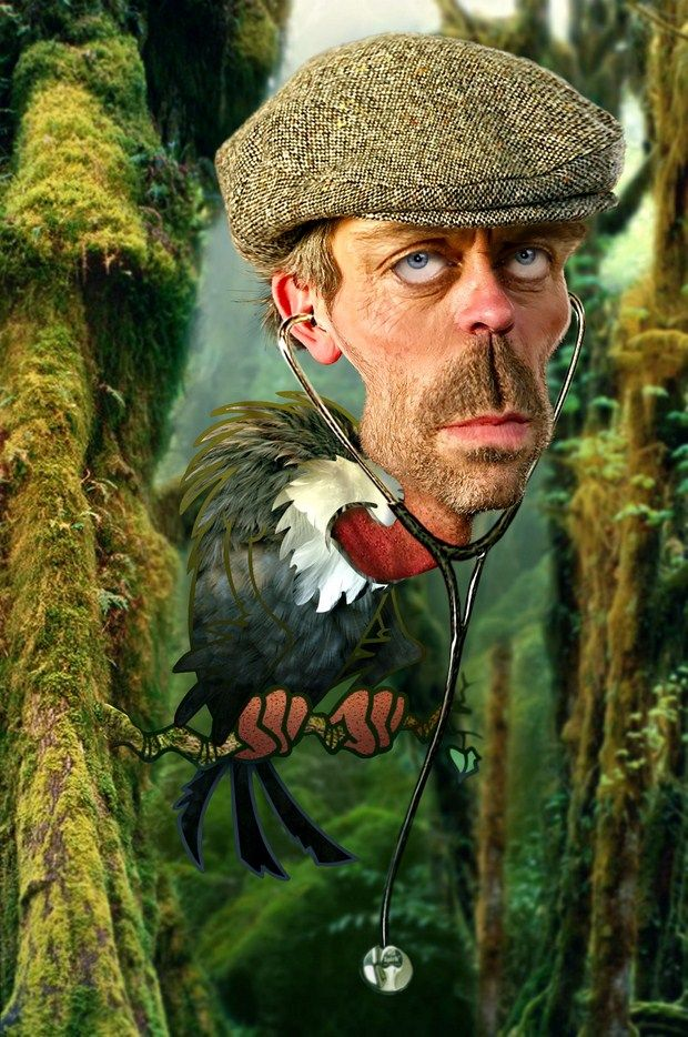 old caricactures | Hugh-Laurie-Old-Buzzard-caricature-helloodesigner