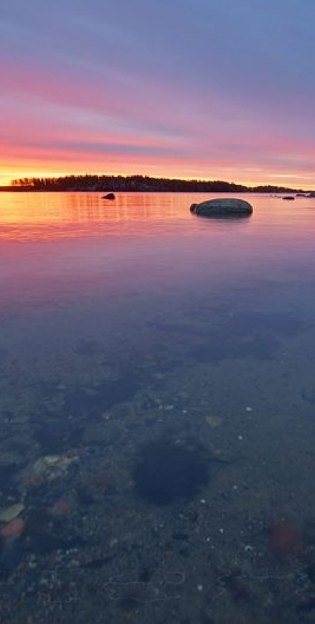 Tones of nature after rain in Uutela ~ Helsinki, Finland • photo: Pete Huu on Flickr