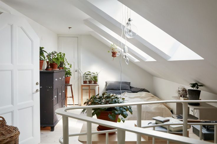 Botanical attic - via cocolapinedesign.com