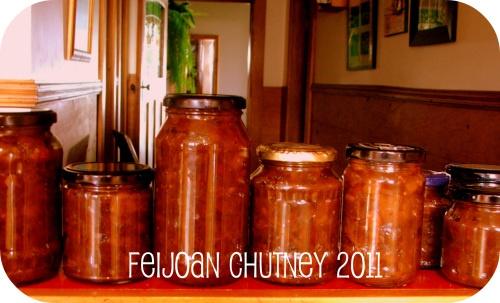 Easy Feijoa Chutney – Recipe