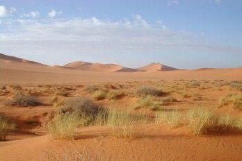 Usar Los Desiertos Para Producir Electricidad Limpia