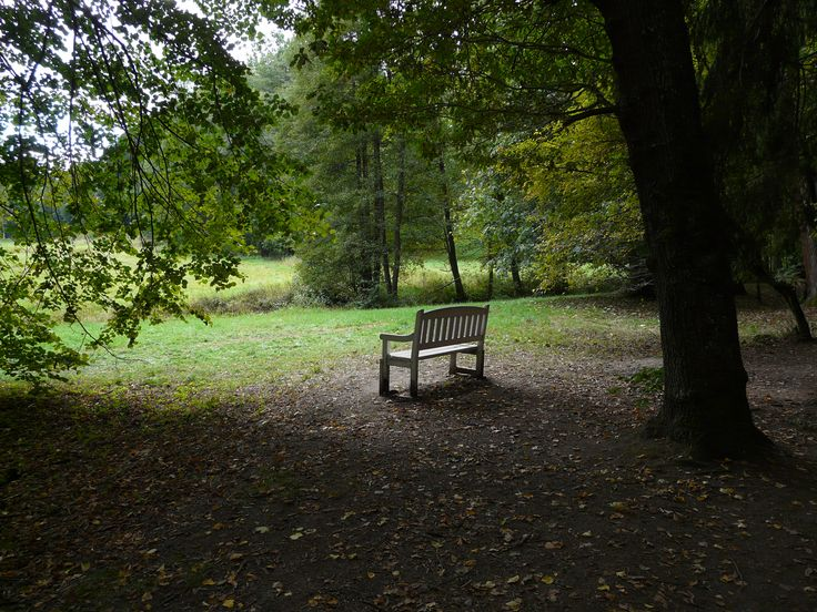 Lonely bench...