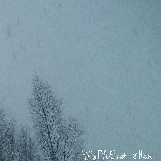 LUONTO. TALVI...LUMI SADE...Ihanaa valkoista Lunta Talvella, tuo Valoa Pitkään Syksy-Talvi aikaan. TERVEELLINEn ELÄMÄNTAPA, Ulkoilua&Terveellistä Koti Ruokaa. Tykkään&Viihdyn, kotona ja ulkona. Sinä?  SUOSITTELEN. HYMY #luonto #ulkoilu #lumisade #lumi #talvi #kevät #ulkoilu #elämäntapa #terveellinen #terveellinenelämä #terveellinenruoka #lifestyle #suosittelen 💡🔝🌍🍜💒👍🔑💓❤☺😉🌞